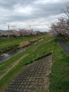 写真 2016-04-02 13 17 10